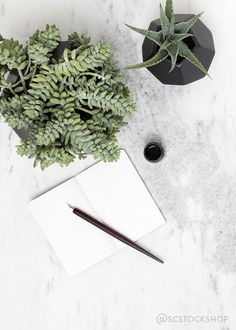 Planner? check. Pen? check. Beautiful succulents for inspiration? check. Working up to making this a reality, someday.