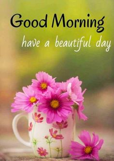 Happy Good Morning Quotes, Good Morning Love Messages, Happy Wednesday Quotes, Good Morning Images Hd, Good Morning Texts, Good Morning Coffee, Good Morning Picture, Good Morning Greetings, Good Morning Good Night