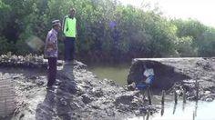 Akibat Banjir Rob, Puluhan Hektar Tambak Rusak