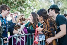 Thank you #MardiPaws and the city of #Mandeville, LA for being so kind to the Ian Somerhalder Foundation.