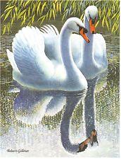 Mute Swans by Robert Gillmor