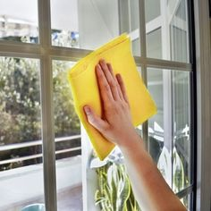 "Bob's Tip of the Day:  Save yourself the time and expense of trying every ""streak-free"" window cleaner on the market. Instead, mix one part vinegar to two parts water in a spray bottle. Wipe off using black-and-white newspaper or a lint-free towel."