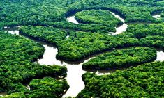 Rio Amazonas - Amazonas - Brasil
