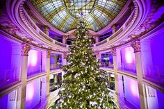 After riding the elevators at the Hyatt a couple of times, hop over to the Neiman Marcus and check out the gargantuan four-story tall Christmas in the middle of the store's rotunda. Better yet, if you're parched, grab a libation and walk in circles and drink in all the splendid. 'Tis the season!