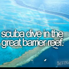 Not the Great Barrier Reef but just one without a bunch of Sharks that are dangerous!