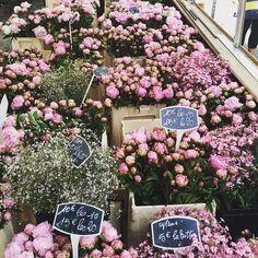 Favorite flower shop #louise misha back to paris