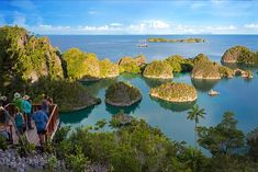 Dewi Nusantara Liveaboard 2019 - Raja Ampat All To Yourself!!! - http://www.diveguide.com/dewinusantara-indonesialiveaboard/raja-ampat-scuba-diving