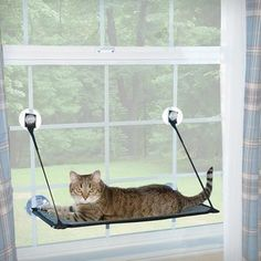 K and H Pet Products Kitty Sill Double Stack EZ Window Mount | Overstock.com Shopping - The Best Deals on Cat Furniture