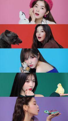 Red Velvet Roter Samt The post Roter Samt & Red velvet ❤️ appeared first on Red . Irene Red Velvet, Red Velvet Joy, Red Velvet Seulgi, Red Velvet Wendy, K Pop, Kpop Girl Groups, Korean Girl Groups, Kpop Girls, Snsd