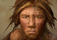 "show that Neanderthals can be divided into at least three groups: one in western Europe, a second in the Southern area and a third in western Asia."" [from Genetic Evidence of Geographical Groups among Neanderthals]"
