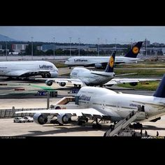 The biggest( and beautiful ) airplanes in the world - World Lufthansa at Frankfurt #A380 #b747
