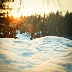 Sunset in snow.