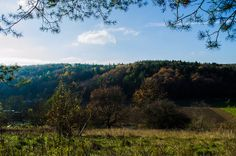 Herbstwald | Flickr - Fotosharing! Photography Photos, River, Mountains, Explore, Nature, Outdoor, Photos, Woods, Fall