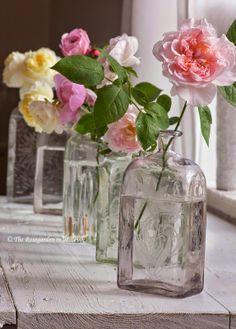 Super Genius Tips: Vases Fleurs Deco paper vases branches.Gold Vases With Greenery greek vases hercules. Vase Arrangements, Vase Centerpieces, Vases Decor, Wall Vases, Black Vase, White Vases, Blue Vases, Vase Transparent, Heirloom Roses