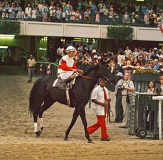 Ruffian on the track for her final race in 1975 (by Tony Leonard )