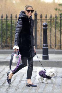 Look de Olivia Palermo para o frio,  com o loafer estampado e bolsa idem. Calça preta, assim como casaco