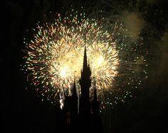 Google Image Result for http://media.treehugger.com/assets/images/2011/10/fireworks-photos-g02.jpg