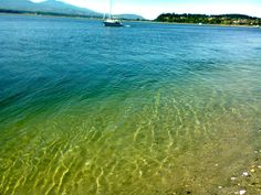 Goose Spit, Comox, Comox Valley, BC. Not the spit of a goose.