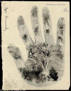 97 best palmistry hands of famous people palm reading chiromancy igor stravinsky manopie impresin o dibujo firmado m4hsunfo