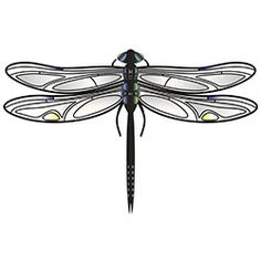 http://www.buzzle.com/images/tattoos/dragonfly-tattoos/simple-yellow-dragonfly-tattoo.jpg