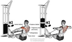 Targets your Posterior Deltoid. Your Lateral Deltoid Middle and Lower Trapezii Rhomboids Infraspinatus Teres Minor Brachialis and Brachioradialis work as synergists. Also known as a rear deltoid cable row. Cable Machine Workout, Cable Workout, Rear Delt Exercises, Back Exercises, Shoulder Exercises, Weight Training, Weight Lifting, Good Back Workouts, Shoulder Workout