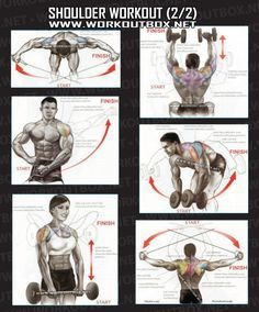 Shoulder Workout Part 2 - Healthy Fitness Exercises Gym Back - Yeah We Train !