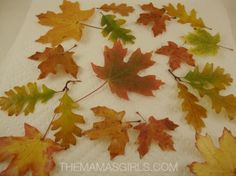 This is the best & easiest way to preserve your favorite Fall leaves! You can use them later for making an Autumn wreath or to decorate the Thanksgiving table! Autumn Crafts, Nature Crafts, Leaf Crafts, Diy Crafts, Craft Projects, Projects To Try, Fall Projects, Craft Ideas, Autumn Wreaths
