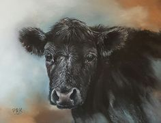 Mercedes the Black Angus of the Farm Animal series.