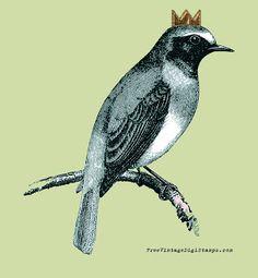 **FREE ViNTaGE DiGiTaL STaMPS**: Free Digital Stamp - Sweet Bird on a Branch
