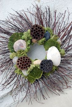 Twig & seashell wreath with lotus, pods & reindeer moss Seashell Wreath, Seashell Crafts, Beach Crafts, Diy Crafts, Coastal Christmas, Christmas Wreaths, Christmas Crafts, Christmas Decorations, Nature Crafts