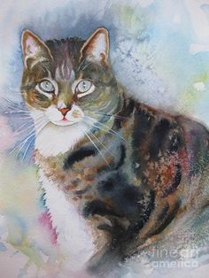 Mugsy by Karin Zeller, cat