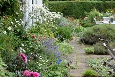 Early Autumn in an English Garden | Fine Gardening