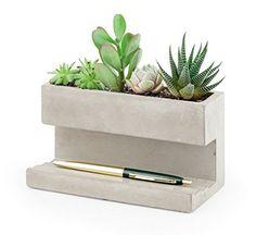 Kikkerland Concrete Desktop Planter - The Quick Gift