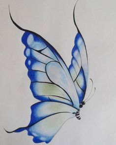 Jessica lost 54 kgs : Florida woman's Weight Loss Story After She Visited Local Dog Grooming Store Butterfly Drawings With Color, Butterfly Sketch, Butterfly Painting, Butterfly Art, Flower Art, Butterfly Watercolor, Flower Sketches, Art Drawings Sketches Simple, Pencil Art Drawings