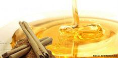 Abelhas - o mercado do mel no Brasil #alcanceosucesso