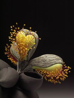39 Ideas For Nature Plants Seed Pods Patterns In Nature, Textures Patterns, Planting Seeds, Planting Flowers, Heart In Nature, Nature Plants, Kintsugi, Seed Pods, Organic Shapes