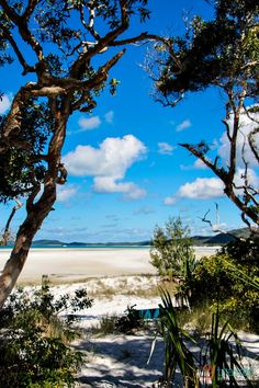 Whitehaven Beach, Queensland,  Australia.I would like to visit this place one day.Please check out my website thanks. www.photopix.co.nz