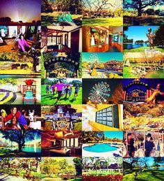 """"""" Eu queria ter um lugar, onde eu pudesse criar tudo o que eu nunca tive na minha infância."""" --- Michael Jackson -   (sobre o rancho de Neverland)"""