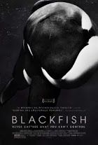 """Watch the entire """"Blackfish"""" documentary here at this link for free!  FUCK SEAWORLD.  Can't wait until that place shuts down..."""