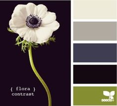 flora contrast. this is a pallet that you could really get creative with.