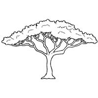 African Tree Silhouette Acacia 42 Ideas For 2019 Tree Coloring Page, Coloring Pages, Free Coloring, Musical Rey Leon, Tree Outline, African Tree, African Crafts, Tree Quilt, Little Christmas Trees