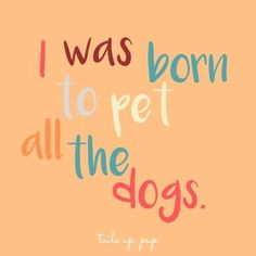 Dog sayings, dog quotes, pet the dogs Deep And Funny Thoughts About The Animals In Our Life Dogs Quotes Rescue Cats 36 Super Ideas Dog Quotes Love, Sad Quotes, Inspirational Quotes, Quotes On Dogs, Sweet Dog Quotes, Quotes About Dogs, I Love Dogs, Puppy Love, Cute Dogs