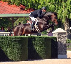 Super cool hunter derby jump! #charleighscookies #hunterderbies #equestrian