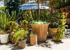 Trinitate Fábrica, lo mejor para tu jardín! De venta con nosotros !!