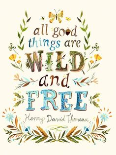 Dress up a bare wall with the All Good Things are Wild and Free Canvas Wall Art from Oopsy Daisy. Canvas wall art is perfect for adding color and style to bedrooms, playrooms, nurseries and even bathrooms!