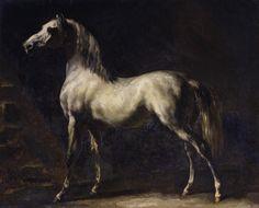 """Cheval arabe gris-blanc"" (before by Théodore Géricault Painted Horses, Art Gris, White Arabian Horse, Art Occidental, Oil On Canvas, Canvas Prints, Big Canvas, Grey Wall Art, Rouen"