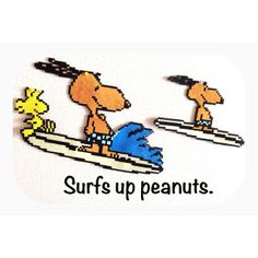 Surf's Up Peanuts perler beads by cheer_up8k