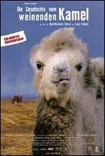 CINE(EDU)-213. La historia del camello que llora. Dir. Byambasuren Davaa e Luigi Falorni. Mongolia, 2003. Documental.  Narra as aventuras dunha familia de nómades no deserto de Gobi (Mongolia) que teñen que afrontar unha crise cando unha camella rexeita o seu recén nacido. Sen o seu leite materno, o pequeno camelo non sobrevivirá así que, chaman un músico veciño dun pobo para realizar un ritual para que a nai se faga cargo da súa cría. http://kmelot.biblioteca.udc.es/record=b1437890~S1*gag
