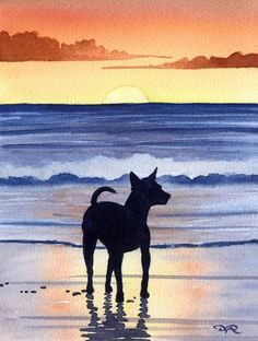 Chihuahua Care - 5 Important Issues Every Owner Should Know - Dog Pets Zone Watercolor Sunset, Watercolor Artists, Watercolor Paintings, Watercolor Paper, Chihuahua Art, Girl And Dog, Dog Art, Painting Inspiration, Art Drawings