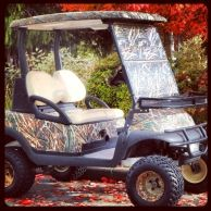 1000 Images About Golf Carts On Pinterest Golf Carts